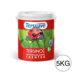 Impermeabilizante frentes Tersinol blanco mate balde x 5kg